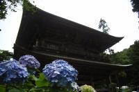 060708円覚寺