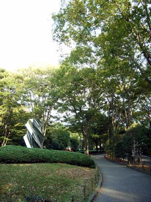 静岡県立美術館への道