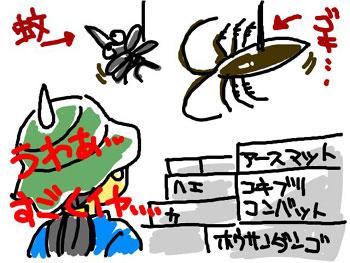 snap_midoriyukako_200871201.jpg
