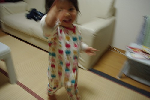 IMGP1104_R.jpg
