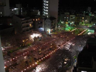 090403夜桜