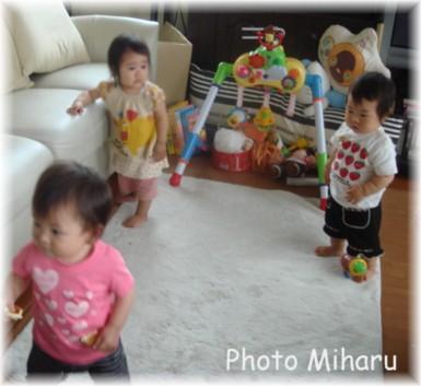 P06202008005-1.jpg