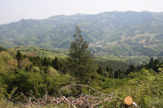 2009-4-30-景色