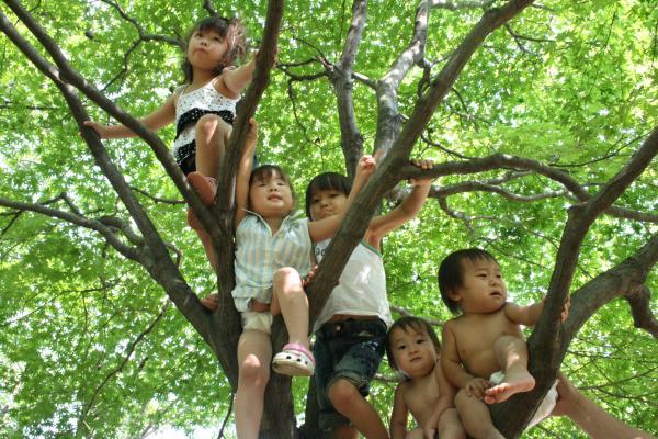 2009-8-15-木登り