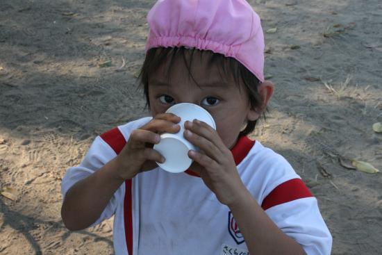 2009-8-28-お茶