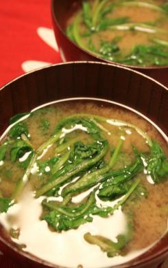 2009-9-17-ホウレンソウのお味噌汁