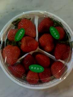 イチゴ食べ比べ
