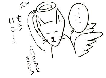 20120211_06.jpg