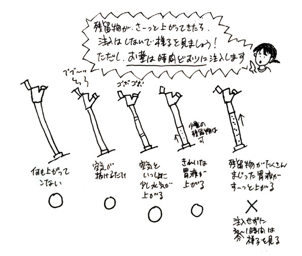 hanko04_01.jpg