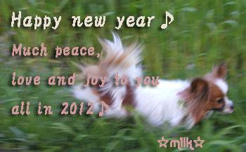 2012年あけましておめでとうございます。