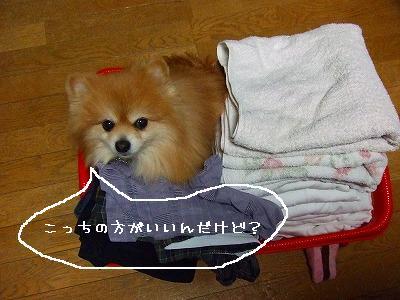 s-DSCF0136.jpg