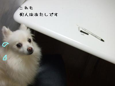 s-DSCF0168.jpg