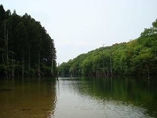海上の森 海上砂防池 ( 別名 大正池 )