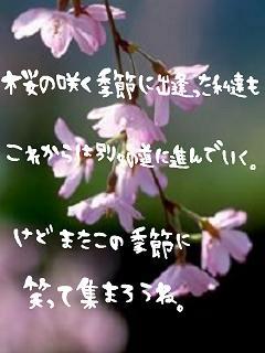 konokisetu_p.jpg
