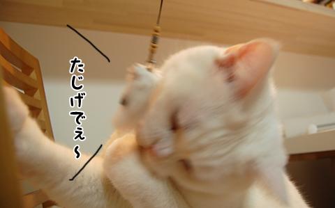 120224_メメタ05