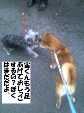 bokuasiagenai.jpg