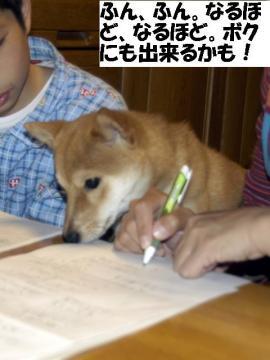 bokumodekiruyo.jpg