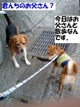 bokunootousan.jpg