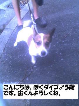 daigokun.jpg