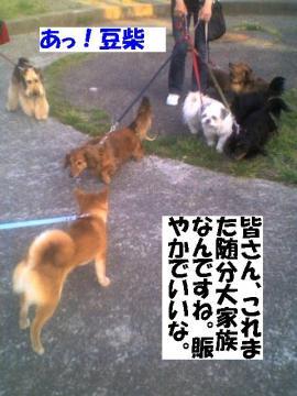daikazoku.jpg