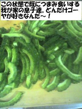 donndakegoyazuki.jpg
