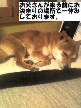 hitoyasumi.jpg