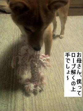 hodokunoumai.jpg