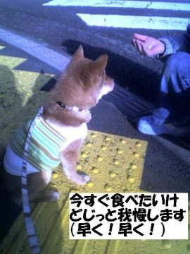 imasugutabetai.jpg