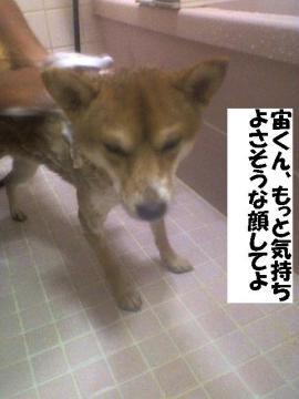kimotiyokunaino.jpg