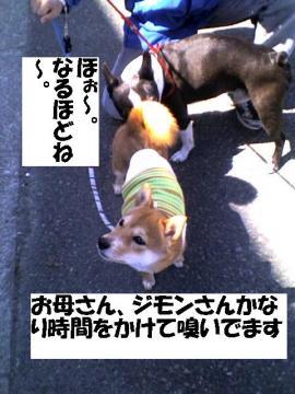 nagaiyo.jpg