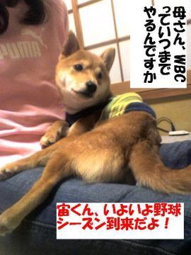 yakyuuseason.jpg