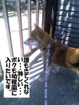 youtienniikitai.jpg