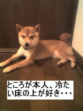 yukanoue.jpg