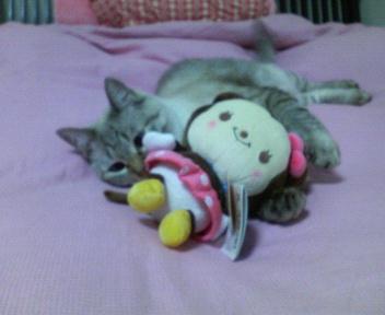 しぃちゃんとミニー