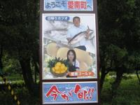 愛南町の看板