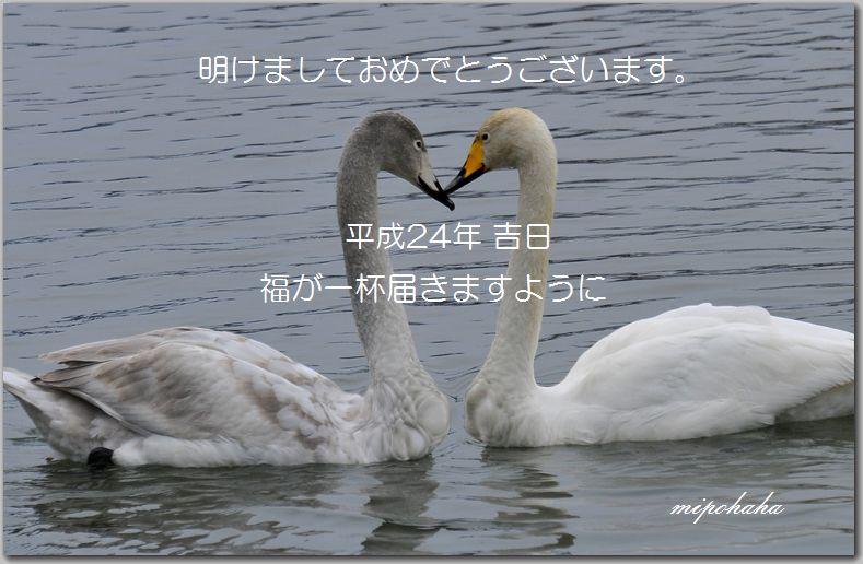 nenga_20120101165608.jpg