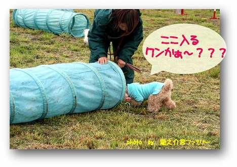 ag-1ryu-kun-1.jpg