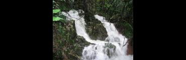 『鳴滝の湧水』付近。大雨時にできる「鳴滝の滝」
