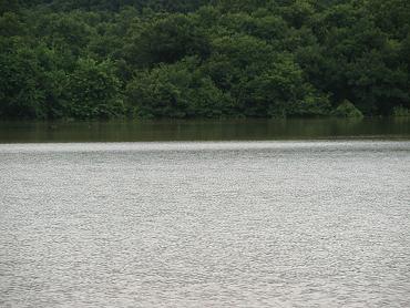 碇地区の一時湖-090727-4