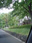 川越街道1