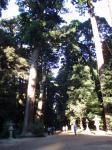 鹿島神社の中