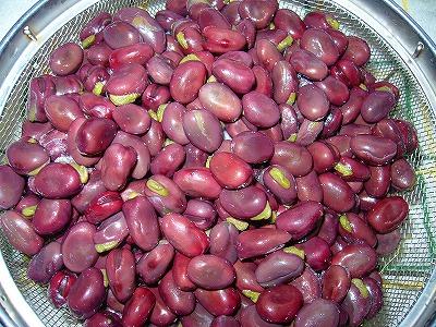 赤色そら豆