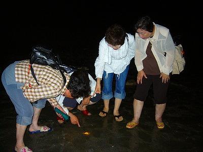 海ホタル3