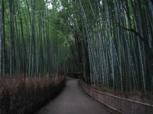 京都・大阪旅行(竹林)