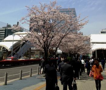2012_0410kenb0092.jpg