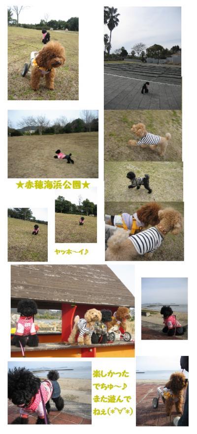 赤穂海浜公園9