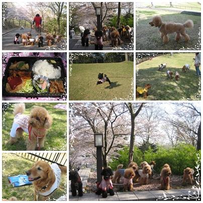 播磨中央公園2