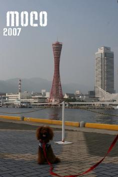 0710-02.jpg