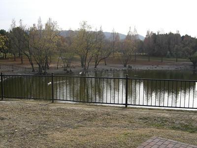 1226-13.jpg