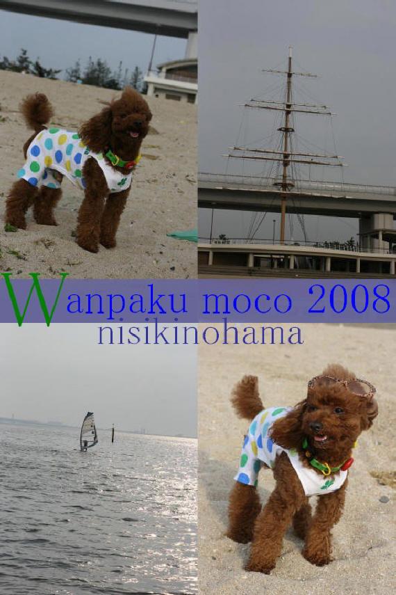 20080523-01.jpg